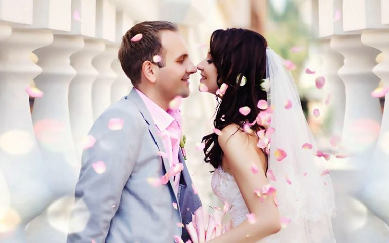 Свадьба в МРК «Зеленый остров»